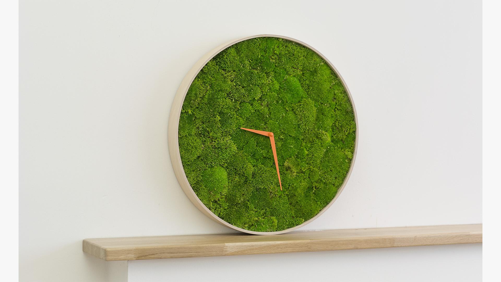 moss, wood, clock, wall clock, green, design, art, architecture, interior design